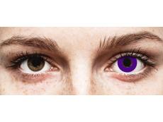 CRAZY LENS - Solid Violet - Одноденні недіоптричні (2 шт.)