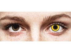 CRAZY LENS - Yellow Twilight - Одноденні недіоптричні (2 шт.)